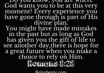 Romans 8:28 You Are Where God Wants You To Be
