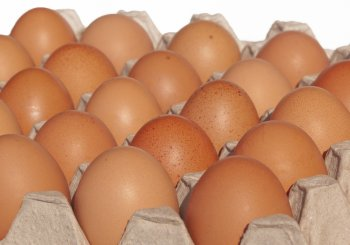 7 Things To Carry Like A Crate Of Eggs.