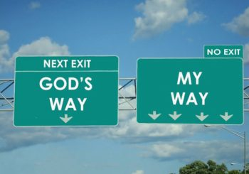God's Will is the best Will